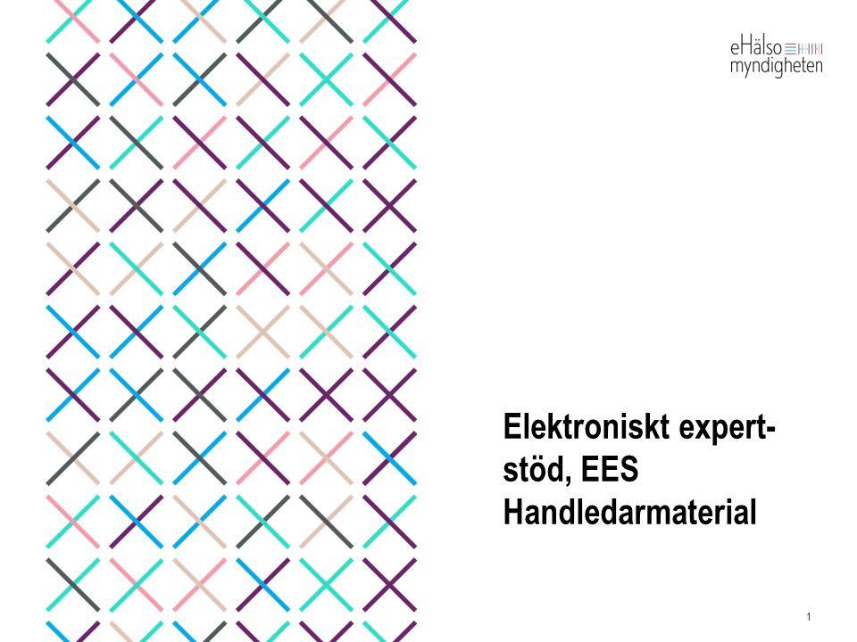 Elektroniskt expert-stöd, EES Handledarmaterial