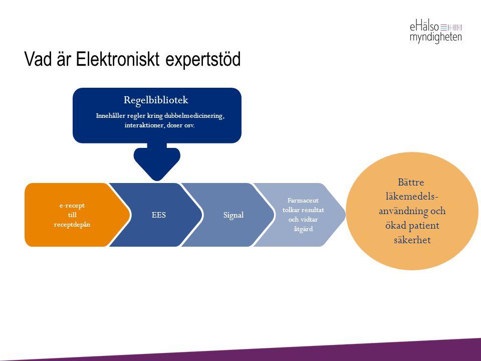 Vad är Elektroniskt expertstöd