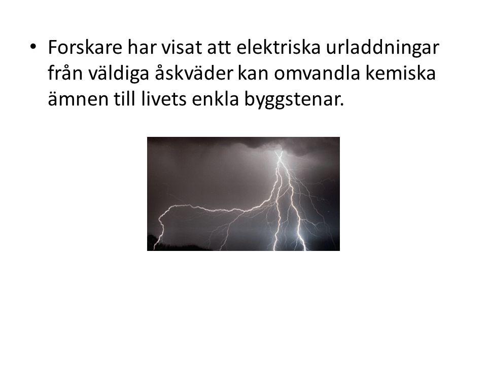 Forskare har visat att elektriska urladdningar från väldiga åskväder kan omvandla kemiska ämnen till livets enkla byggstenar.