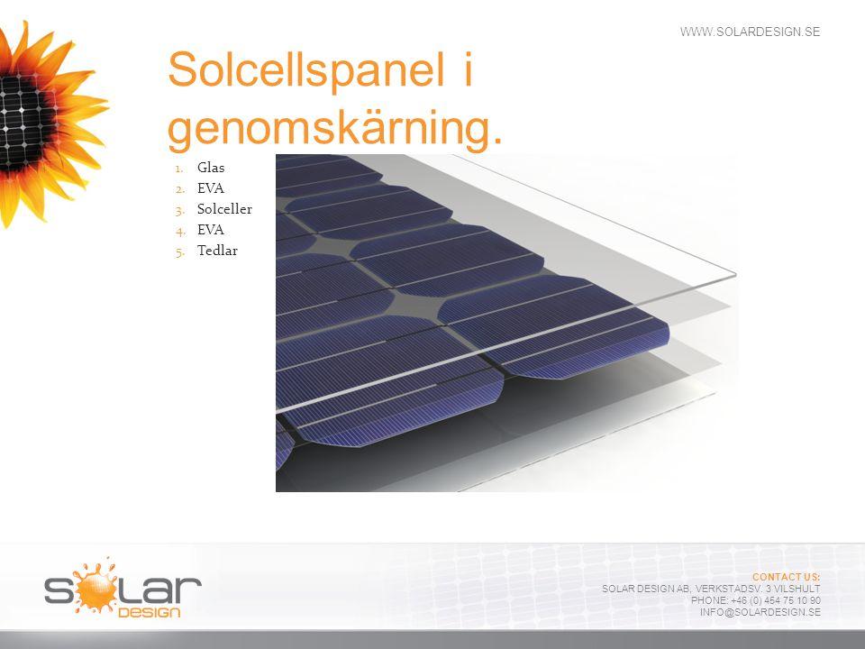 Solcellspanel i genomskärning.