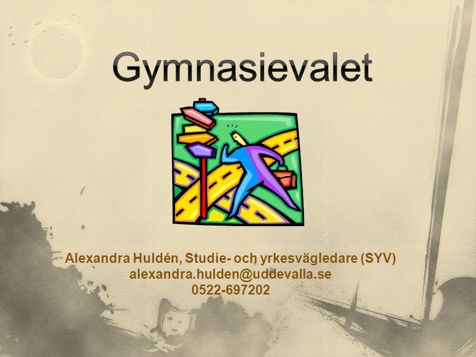 Alexandra Huldén, Studie- och yrkesvägledare (SYV)
