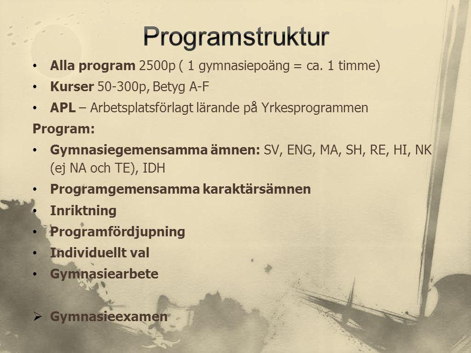 Programstruktur Alla program 2500p ( 1 gymnasiepoäng = ca. 1 timme)