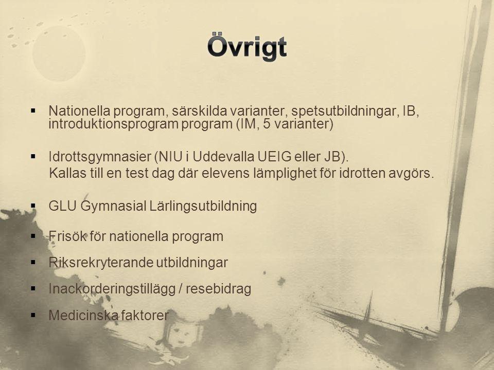 Övrigt Nationella program, särskilda varianter, spetsutbildningar, IB, introduktionsprogram program (IM, 5 varianter)