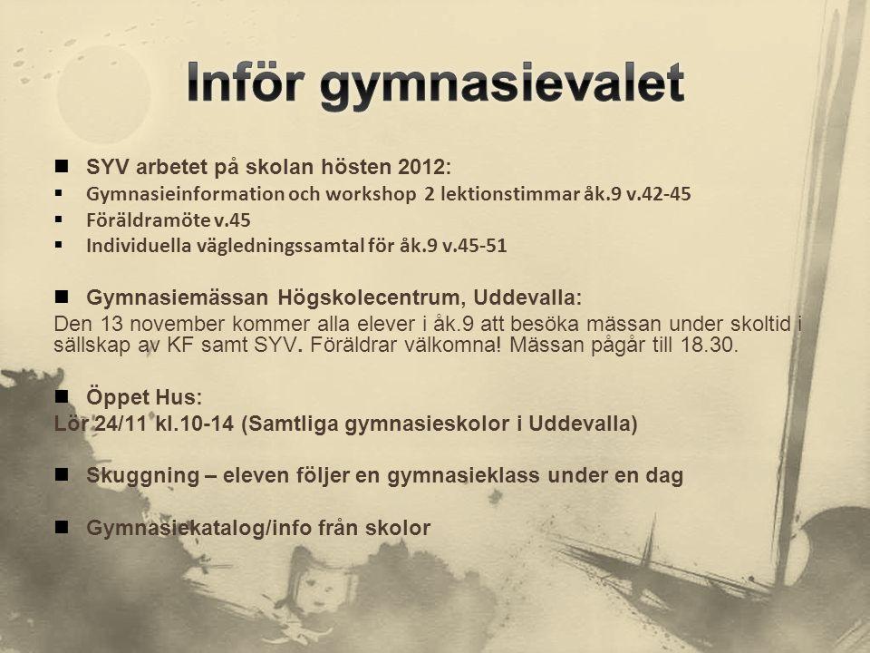 Inför gymnasievalet SYV arbetet på skolan hösten 2012: