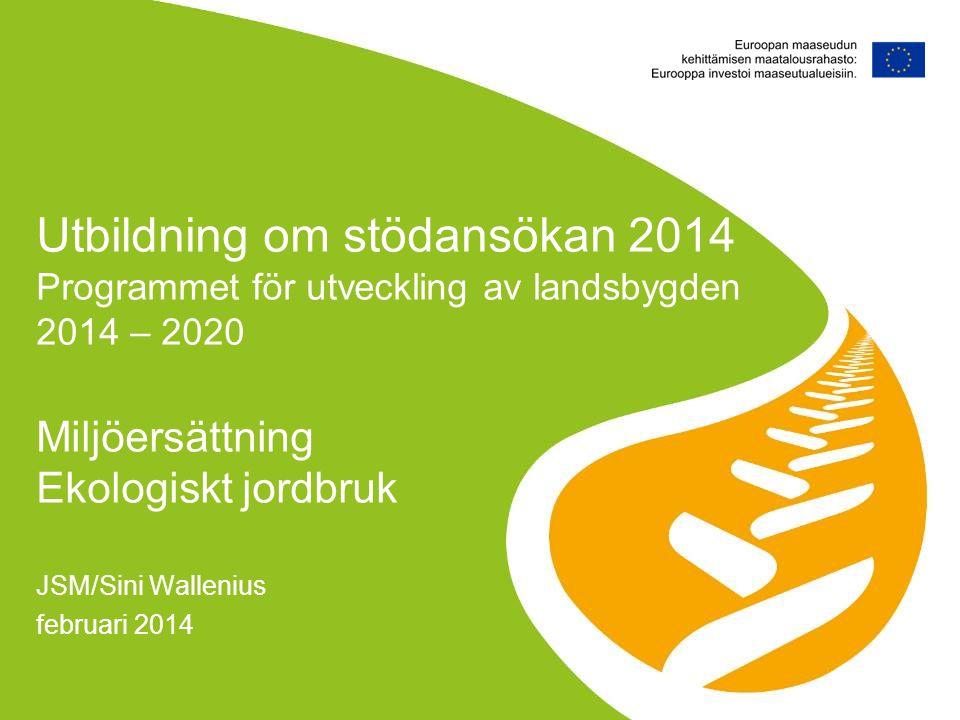 JSM/Sini Wallenius februari 2014
