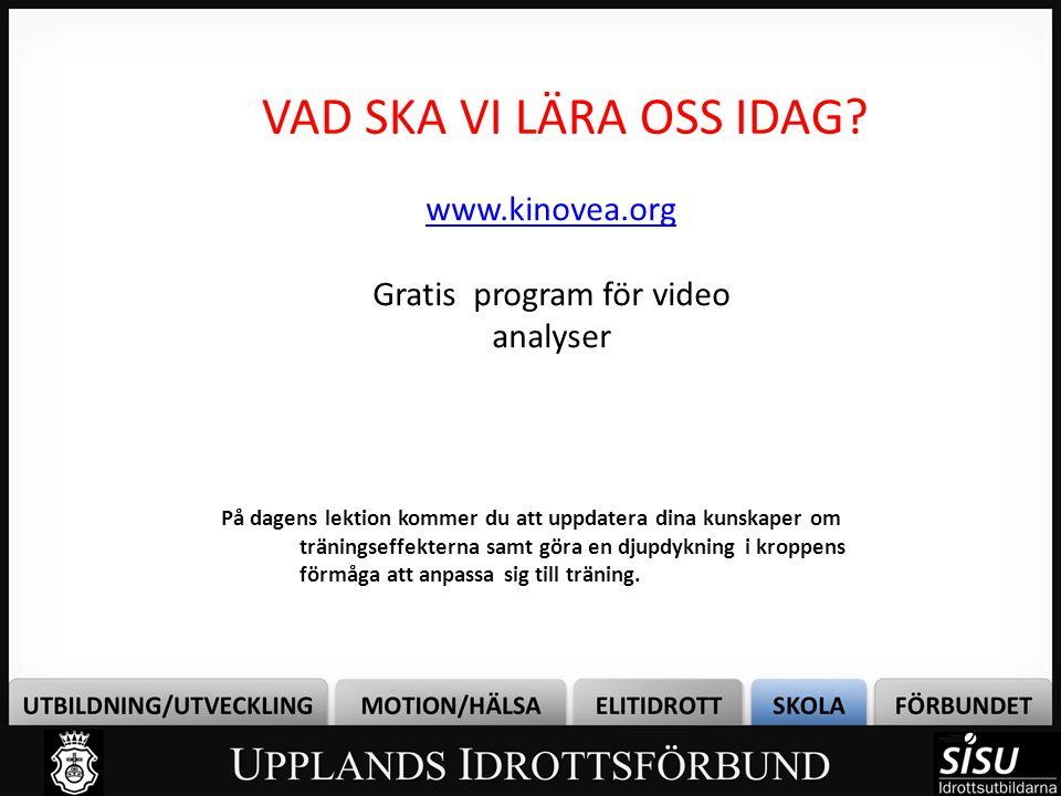 Gratis program för video analyser