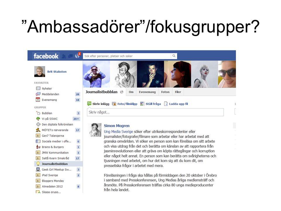 Ambassadörer /fokusgrupper