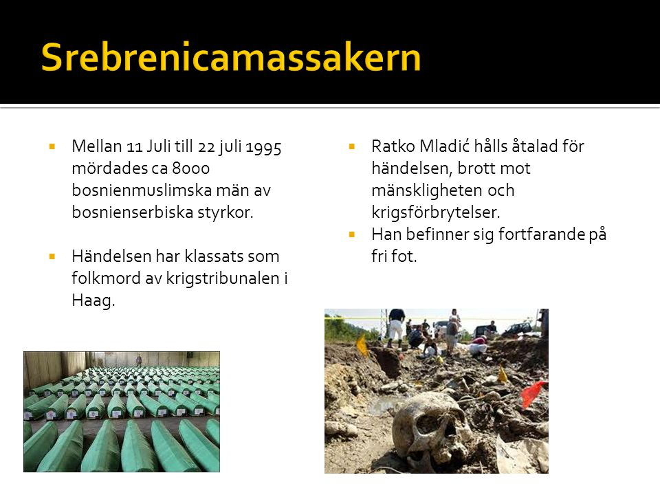 Srebrenicamassakern Mellan 11 Juli till 22 juli 1995 mördades ca 8000 bosnienmuslimska män av bosnienserbiska styrkor.