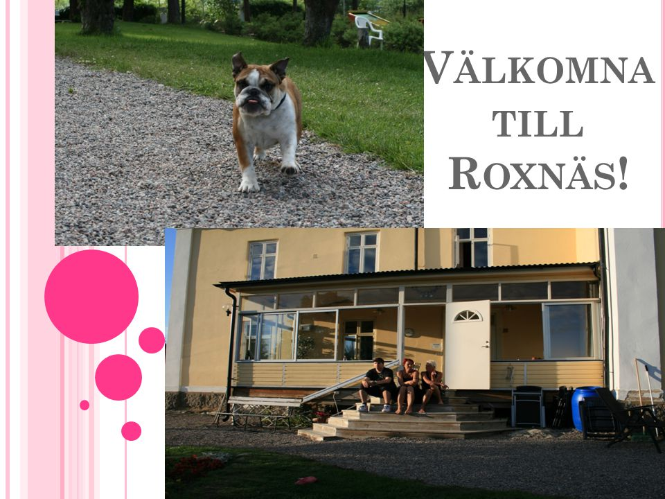 Välkomna till Roxnäs!