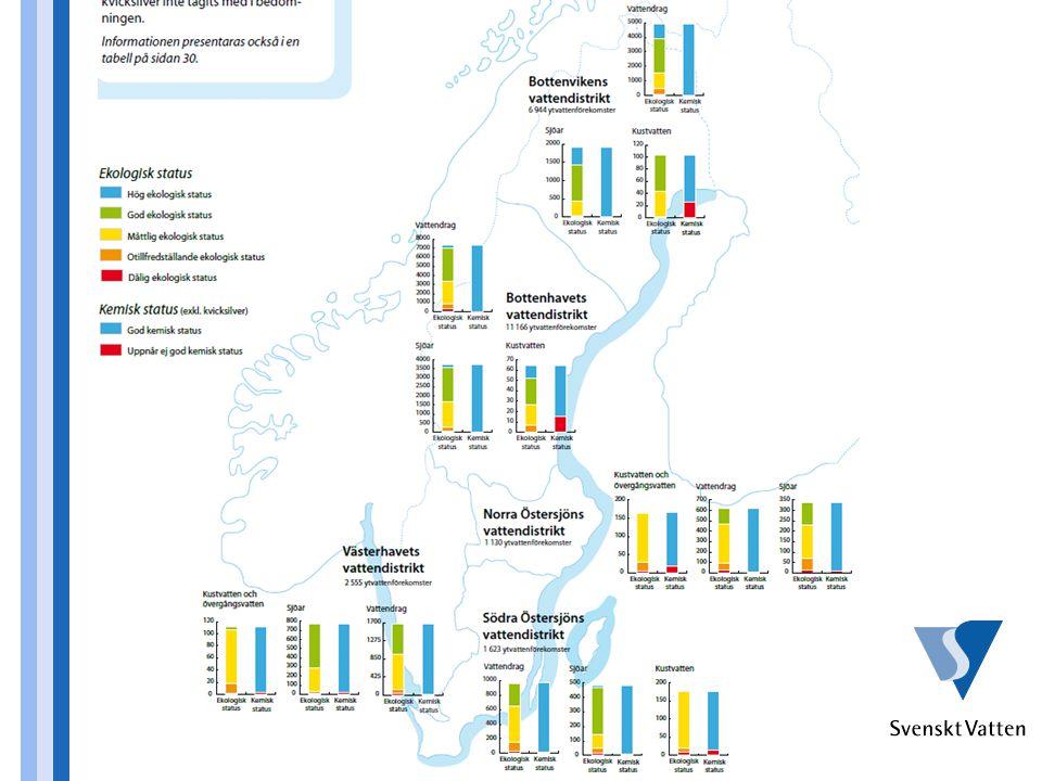 Bilden visar – per vattendistrikt - hur stor andel av sjöar, vattendrag och kustzoner som idag har bra vattenkvalitet = klarar god eller hög status (blå+grön färg).