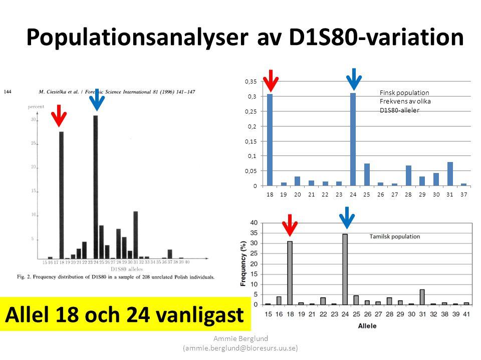 Populationsanalyser av D1S80-variation