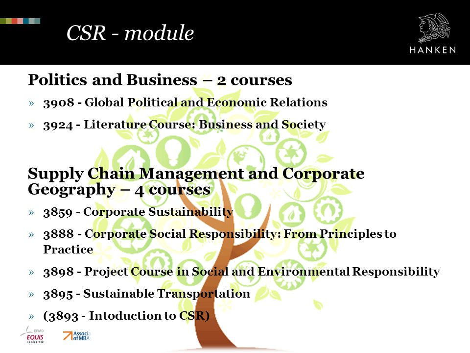 CSR - module Politics and Business – 2 courses