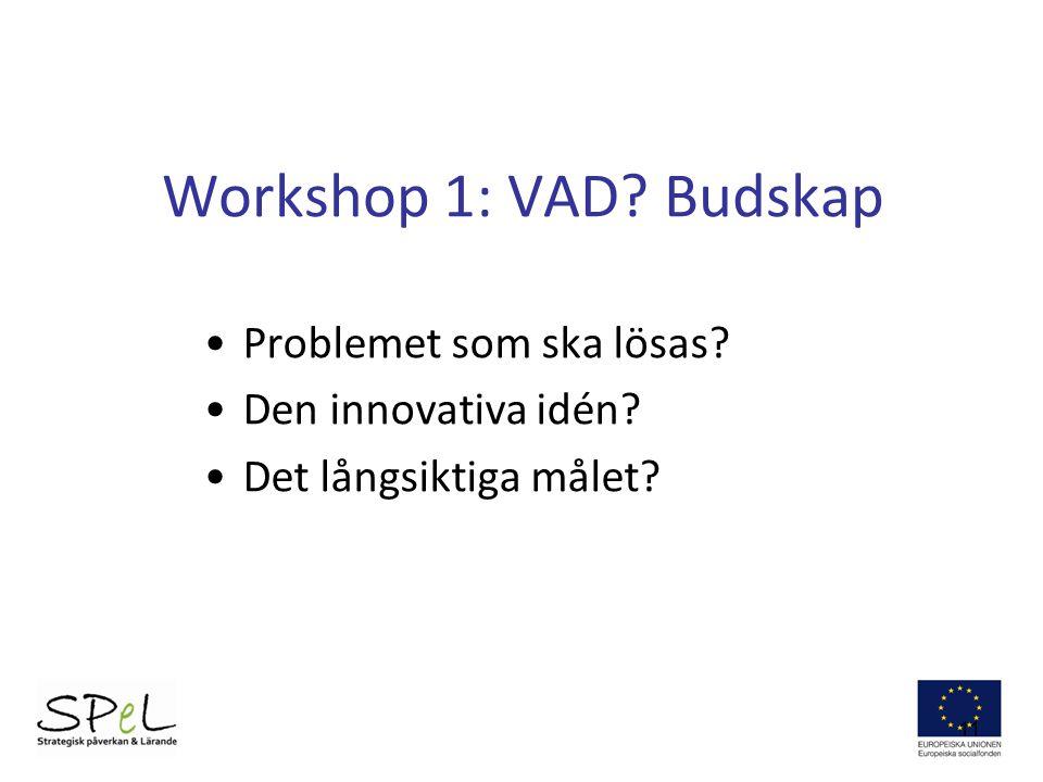 Workshop 1: VAD Budskap Problemet som ska lösas Den innovativa idén