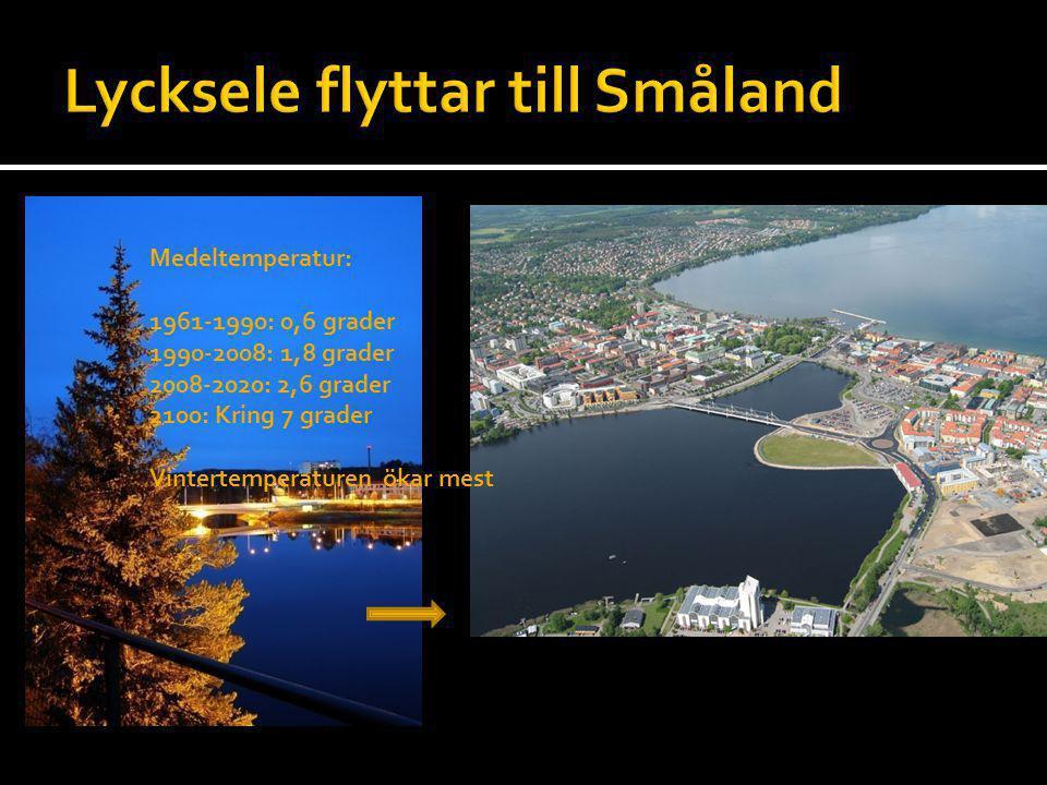 Lycksele flyttar till Småland