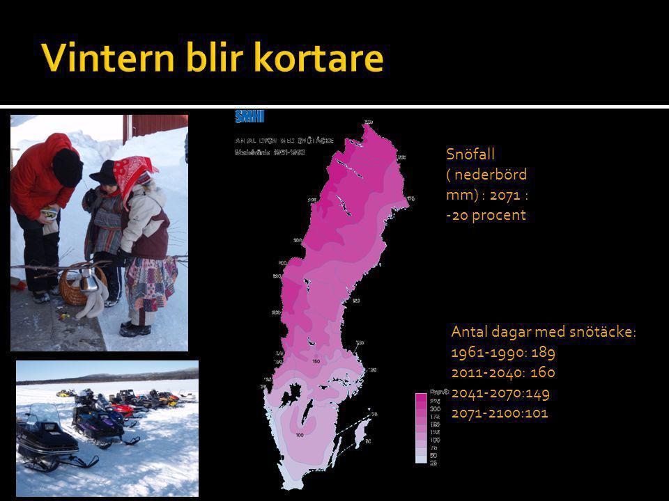 Vintern blir kortare Snöfall ( nederbörd mm) : 2071 : -20 procent