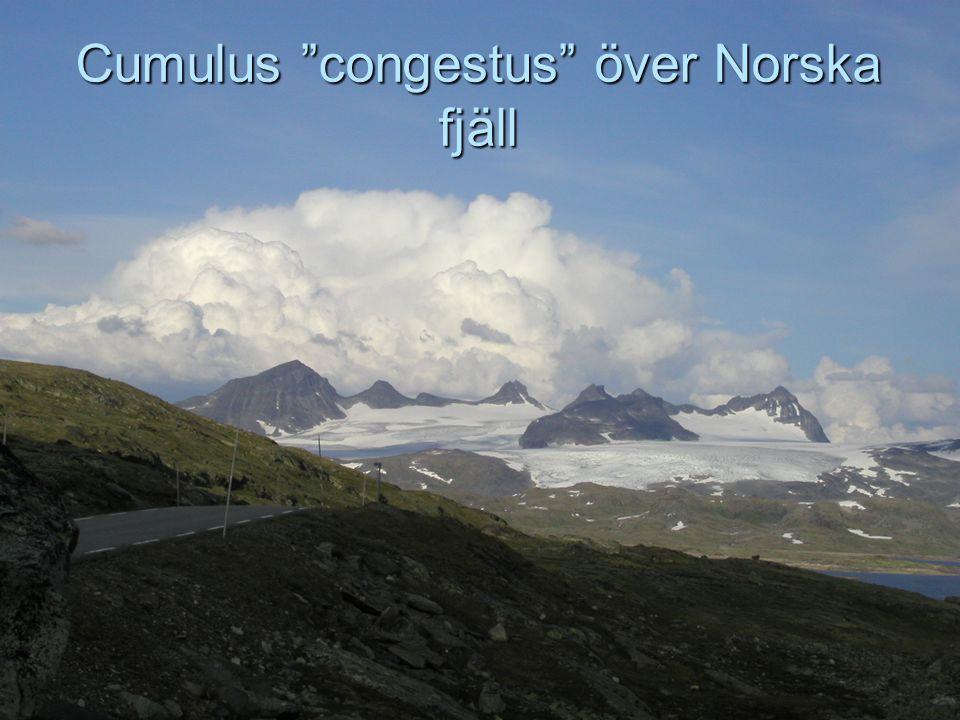 Cumulus congestus över Norska fjäll