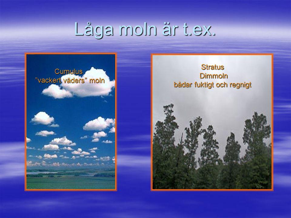 Låga moln är t.ex. Stratus Dimmoln bådar fuktigt och regnigt