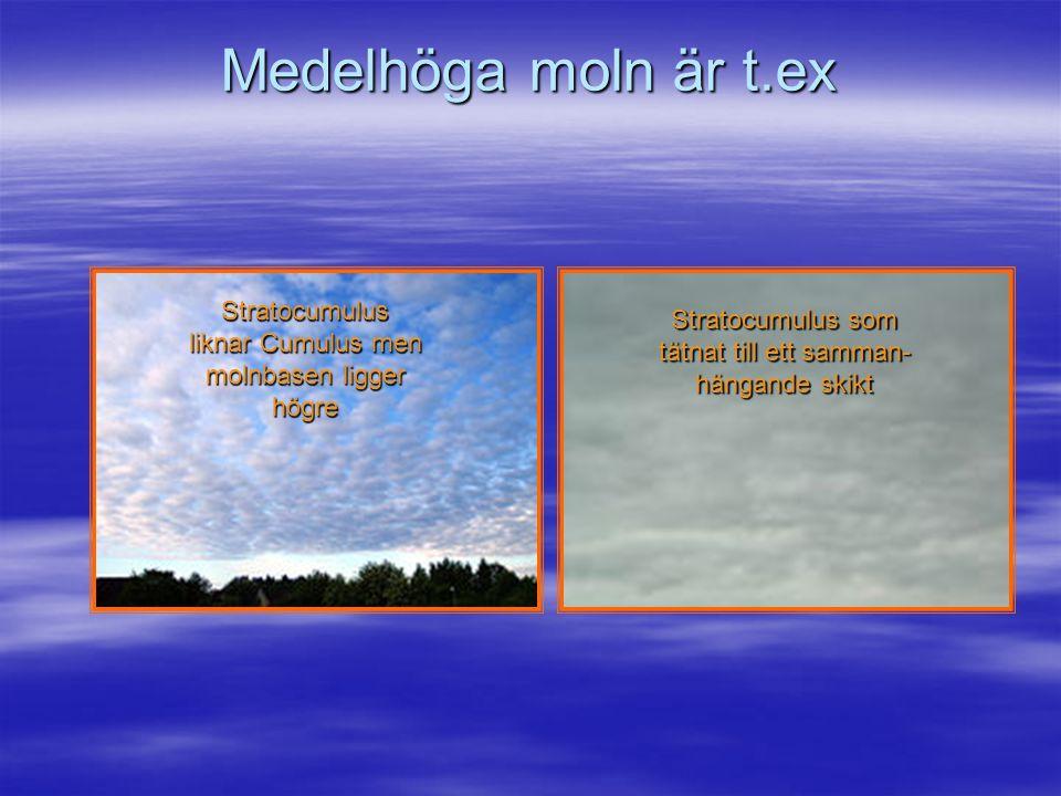 Medelhöga moln är t.ex Stratocumulus liknar Cumulus men molnbasen ligger högre.