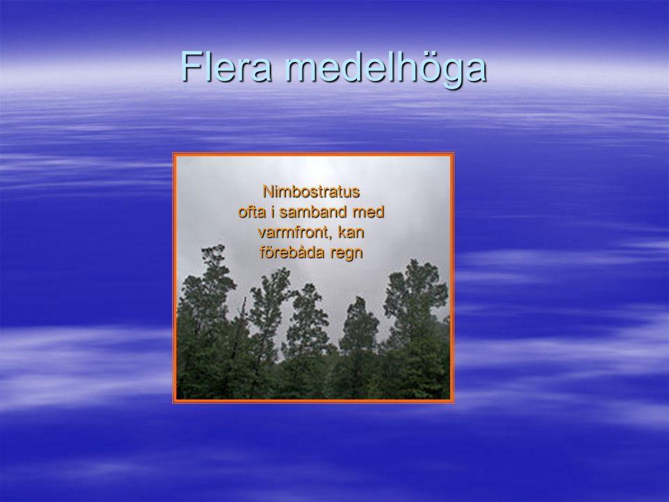 Nimbostratus ofta i samband med varmfront, kan förebåda regn