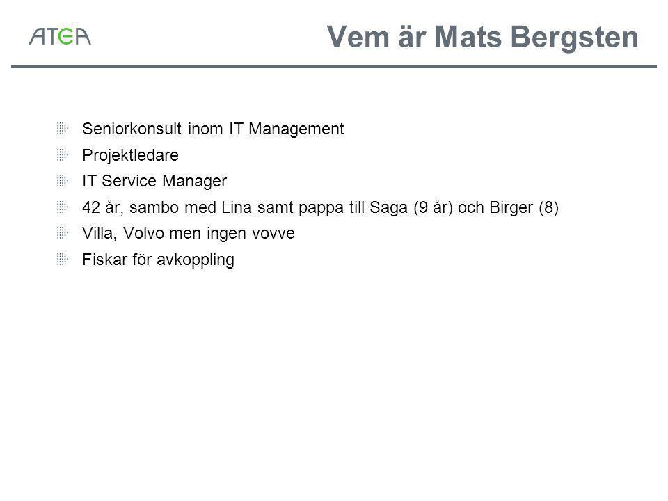 Vem är Mats Bergsten Seniorkonsult inom IT Management Projektledare