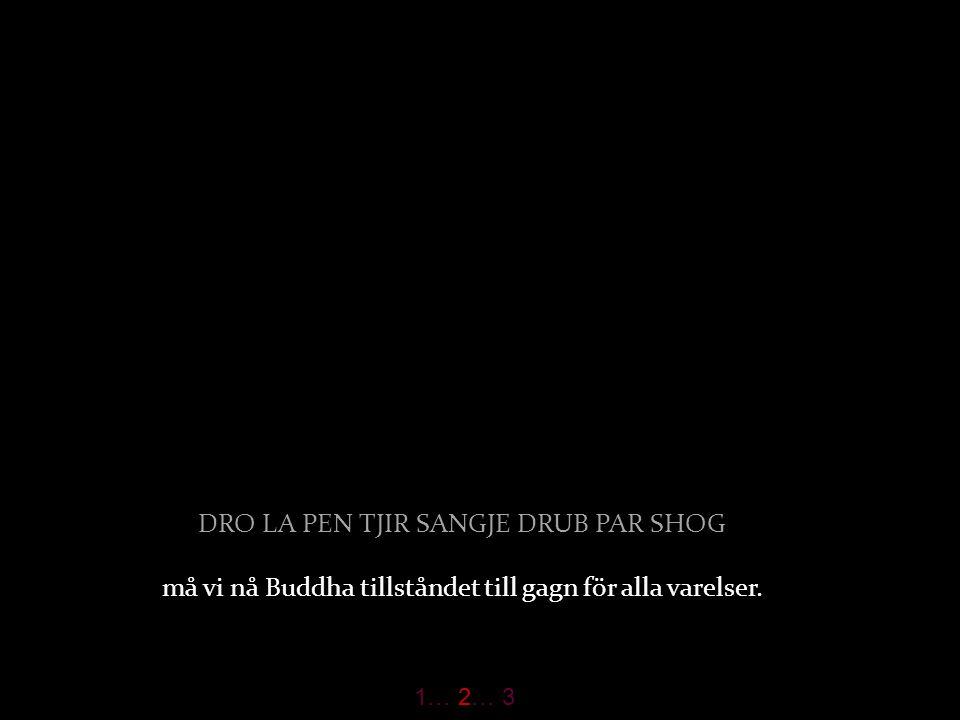 1-4(4) DRO LA PEN TJIR SANGJE DRUB PAR SHOG må vi nå Buddha tillståndet till gagn för alla varelser.