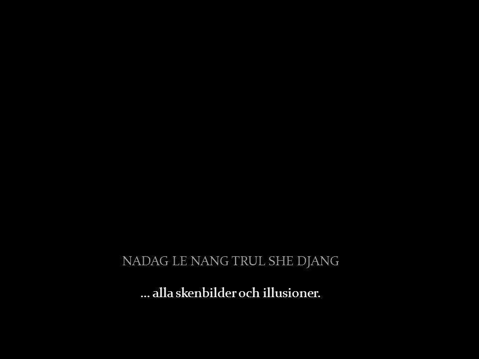 NADAG LE NANG TRUL SHE DJANG … alla skenbilder och illusioner.