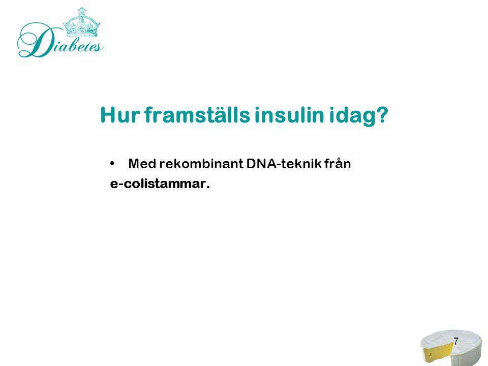 Hur framställs insulin idag