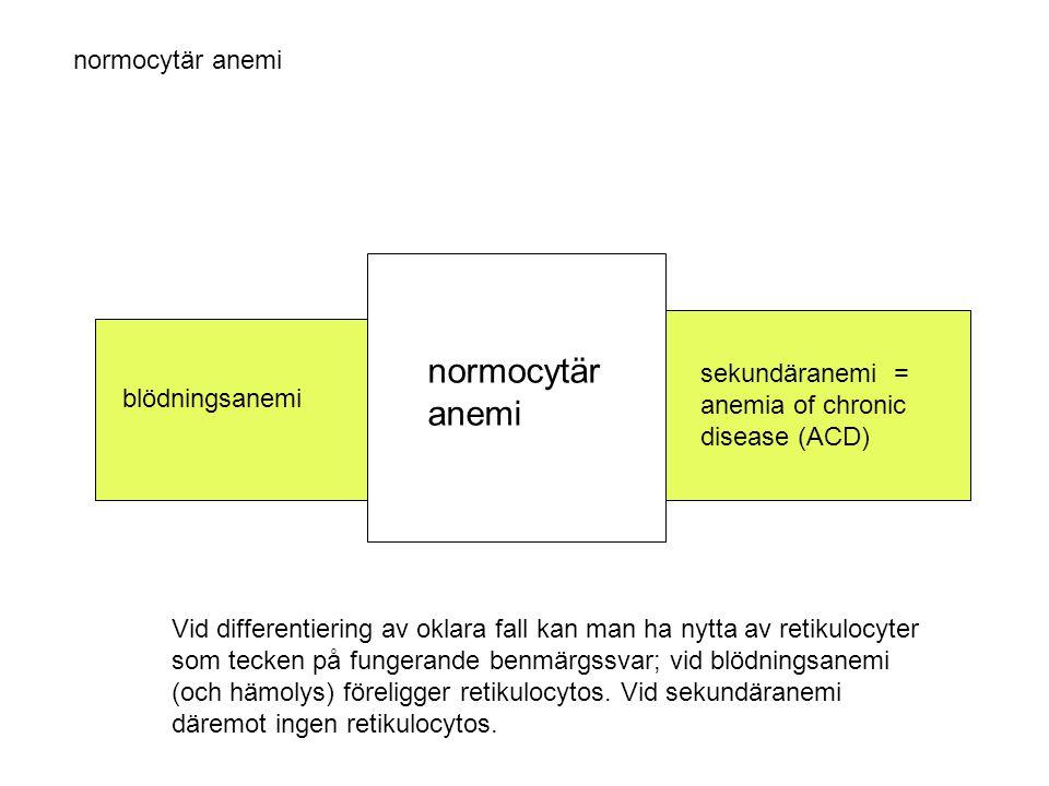 normocytär anemi normocytär anemi