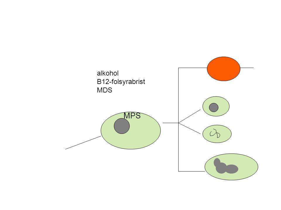 alkohol B12-folsyrabrist MDS