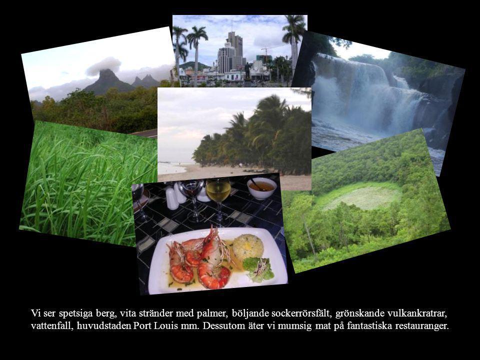 Vi ser spetsiga berg, vita stränder med palmer, böljande sockerrörsfält, grönskande vulkankratrar, vattenfall, huvudstaden Port Louis mm.