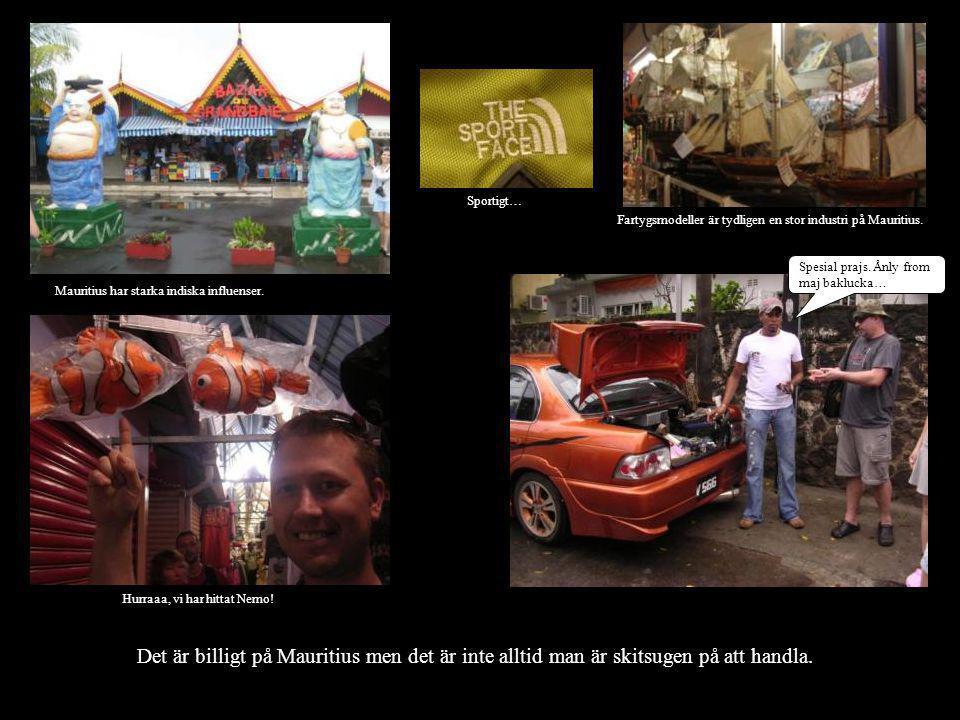 Sportigt… Fartygsmodeller är tydligen en stor industri på Mauritius. Spesial prajs. Ånly from maj baklucka…