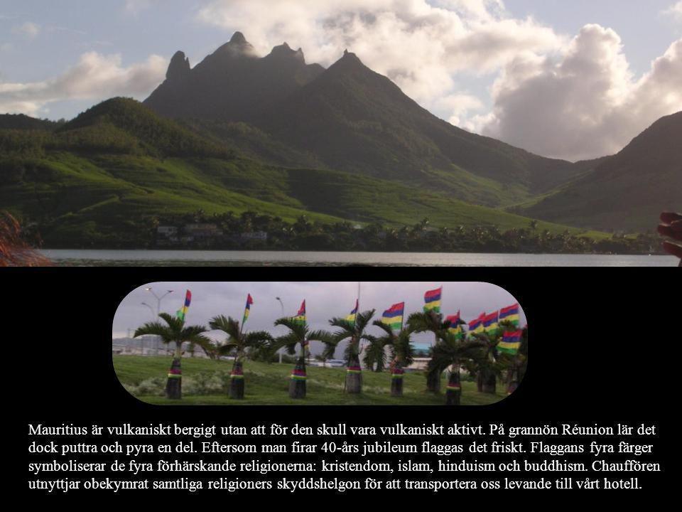 Mauritius är vulkaniskt bergigt utan att för den skull vara vulkaniskt aktivt.