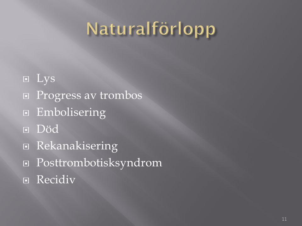 Naturalförlopp Lys Progress av trombos Embolisering Död Rekanakisering