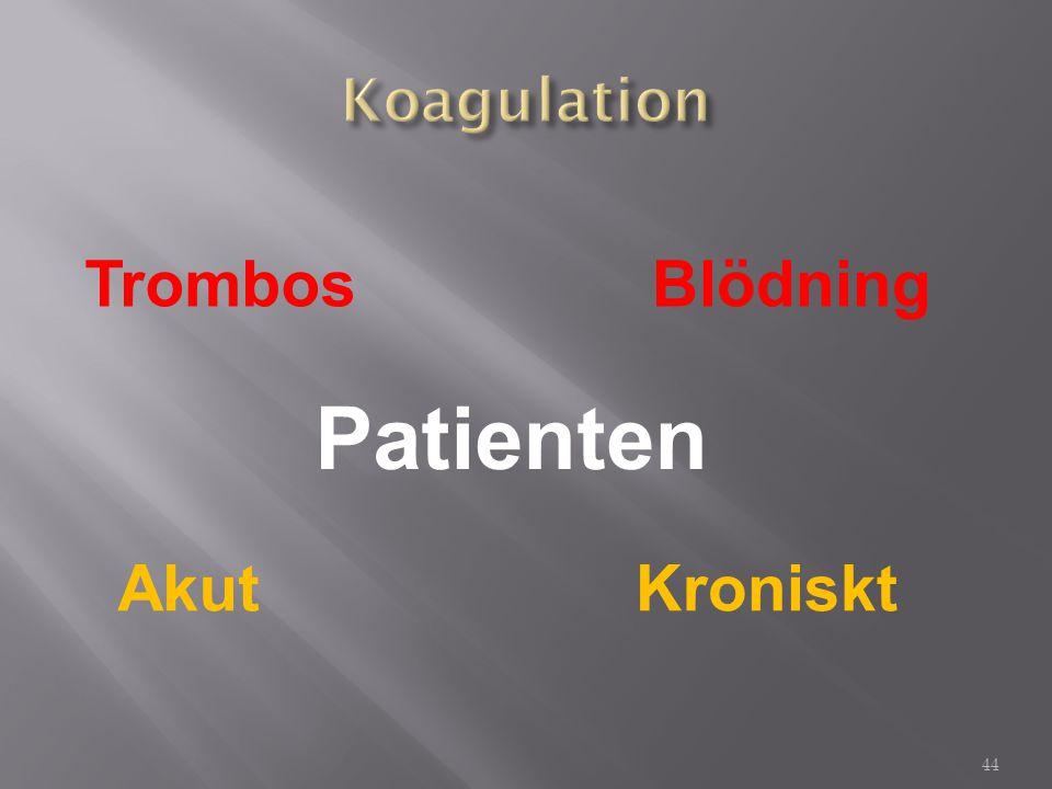 Koagulation Trombos Blödning Patienten Akut Kroniskt