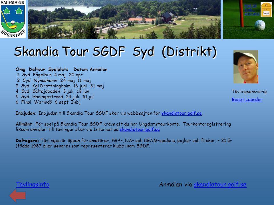 Skandia Tour SGDF Syd (Distrikt)