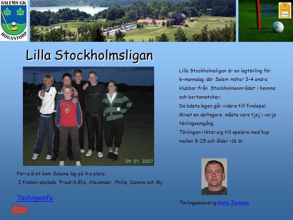 Lilla Stockholmsligan