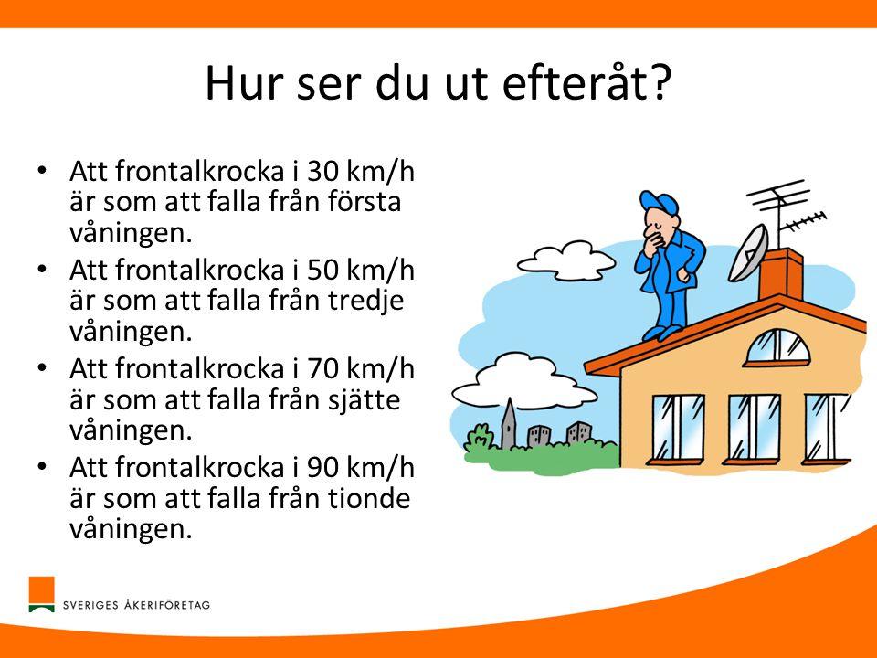 Hur ser du ut efteråt Att frontalkrocka i 30 km/h är som att falla från första våningen.