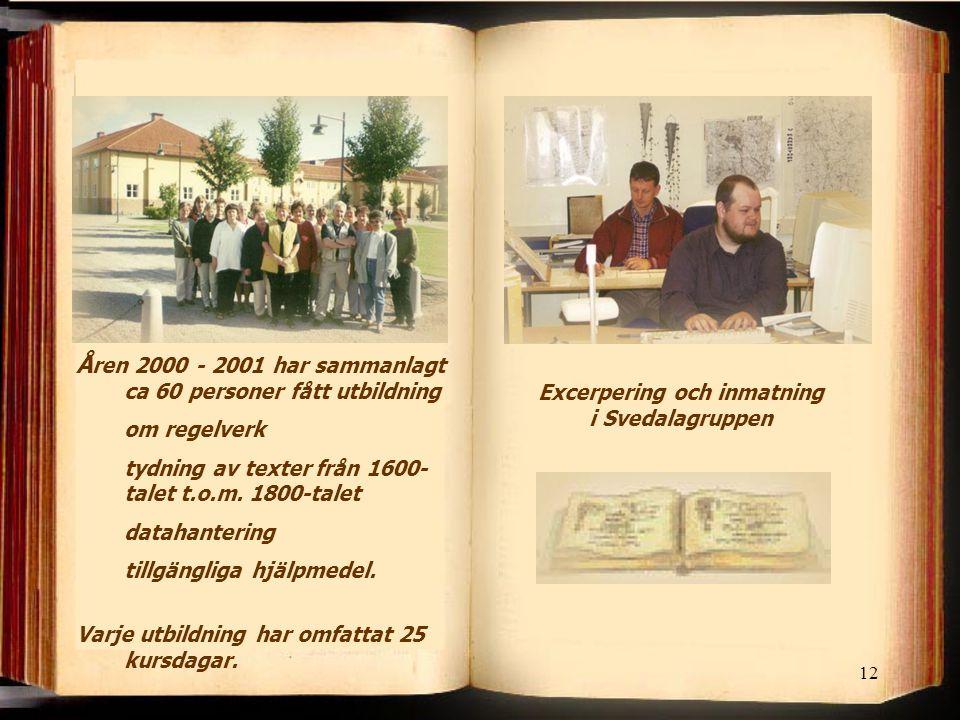 Excerpering och inmatning i Svedalagruppen