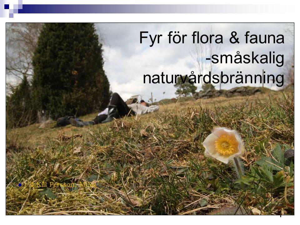 Fyr för flora & fauna -småskalig naturvårdsbränning