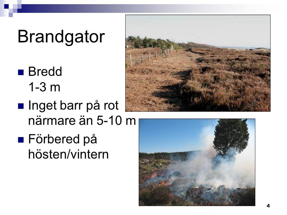 Brandgator Bredd 1-3 m Inget barr på rot närmare än 5-10 m