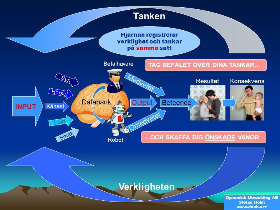 Tanken Verkligheten Medvetet Databank Output Beteende INPUT Omedvetet