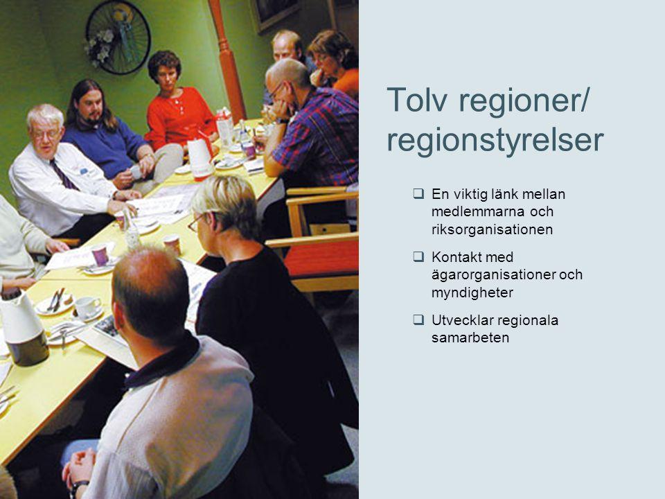 Tolv regioner/ regionstyrelser