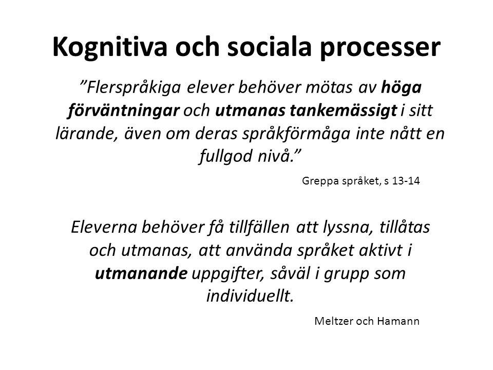 Kognitiva och sociala processer