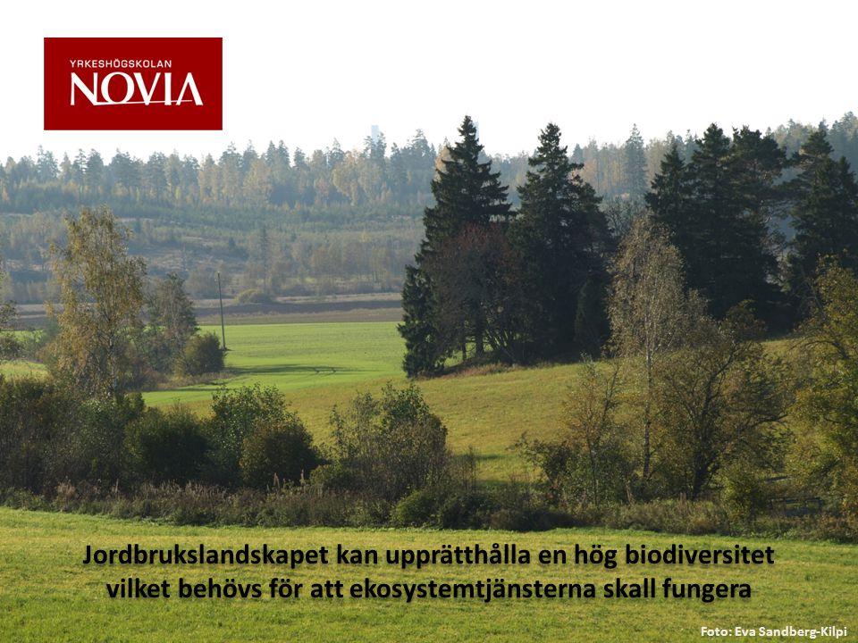 Jordbrukslandskapet kan upprätthålla en hög biodiversitet vilket behövs för att ekosystemtjänsterna skall fungera