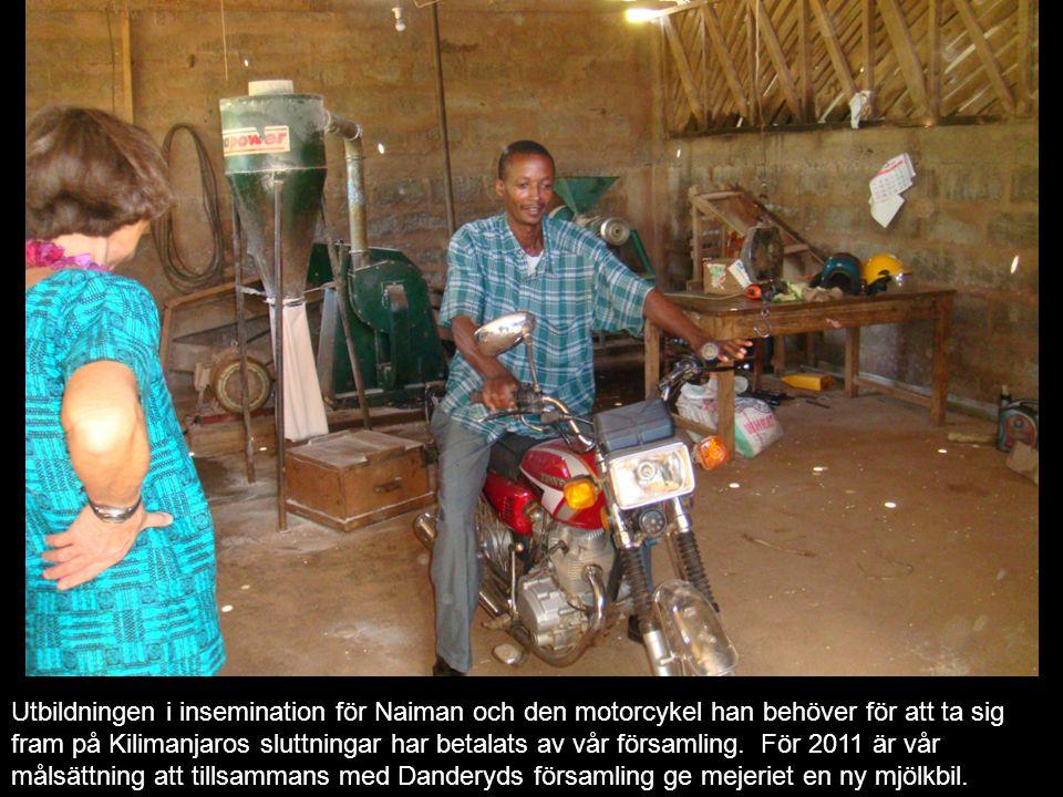 Utbildningen i insemination för Naiman och den motorcykel han behöver för att ta sig fram på Kilimanjaros sluttningar har betalats av vår församling. För 2011 är vår målsättning att tillsammans med Danderyds församling ge mejeriet en ny mjölkbil.