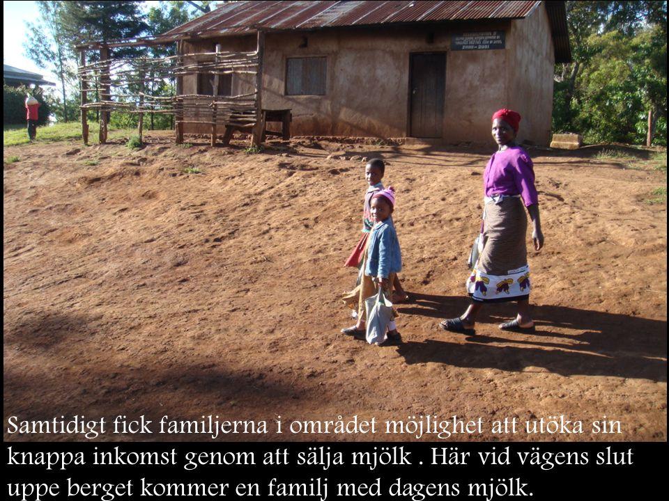 Samtidigt fick familjerna i området möjlighet att utöka sin knappa inkomst genom att sälja mjölk .
