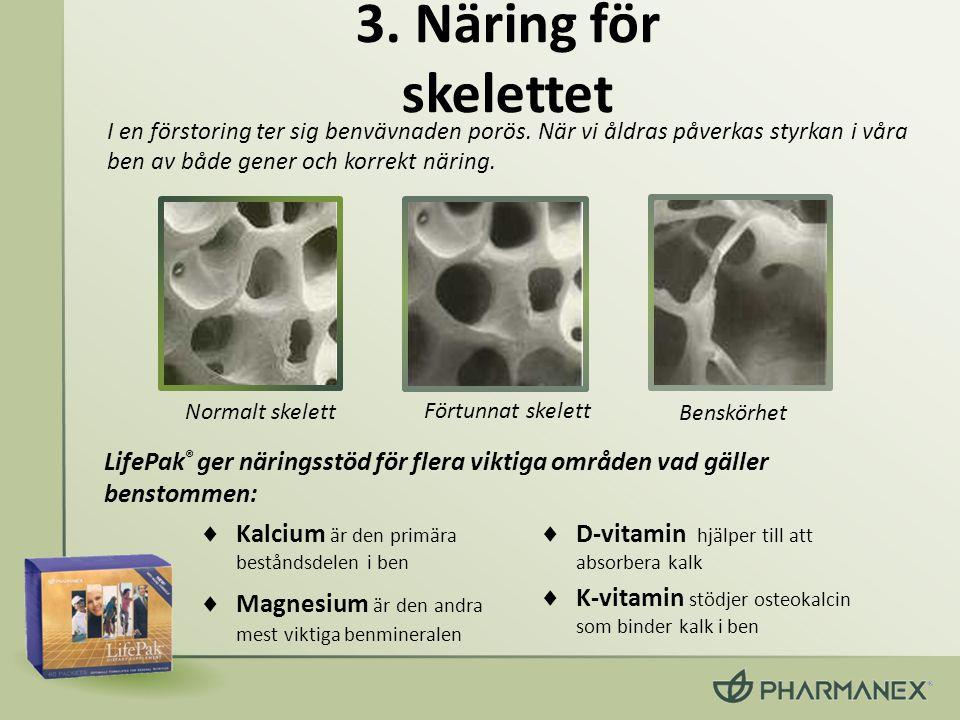 3. Näring för skelettet I en förstoring ter sig benvävnaden porös. När vi åldras påverkas styrkan i våra ben av både gener och korrekt näring.