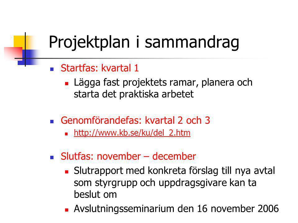 Projektplan i sammandrag
