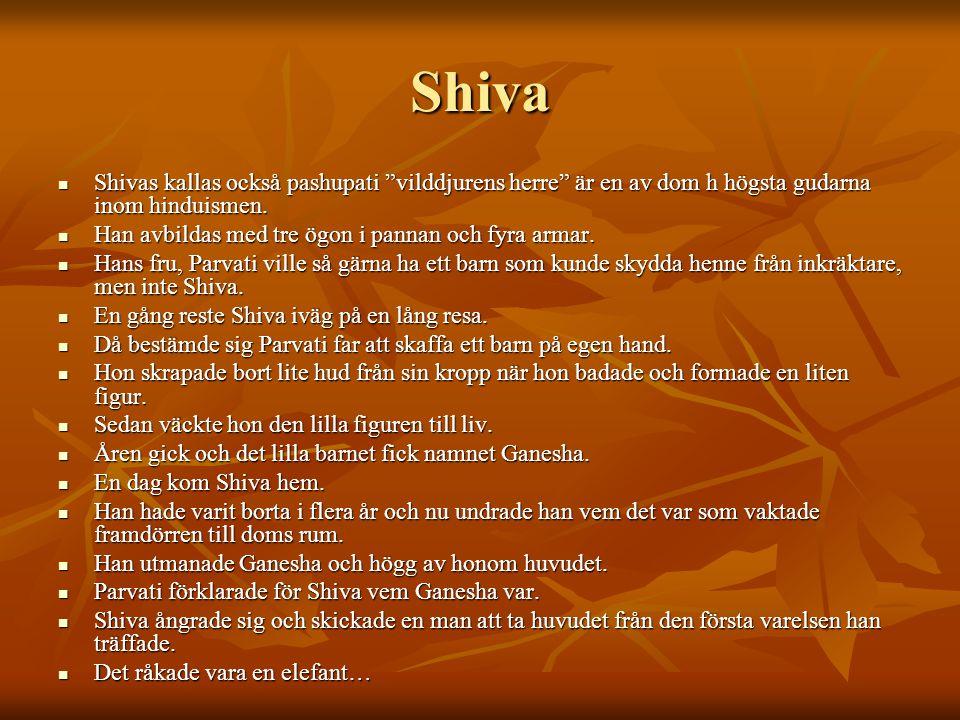 Shiva Shivas kallas också pashupati vilddjurens herre är en av dom h högsta gudarna inom hinduismen.