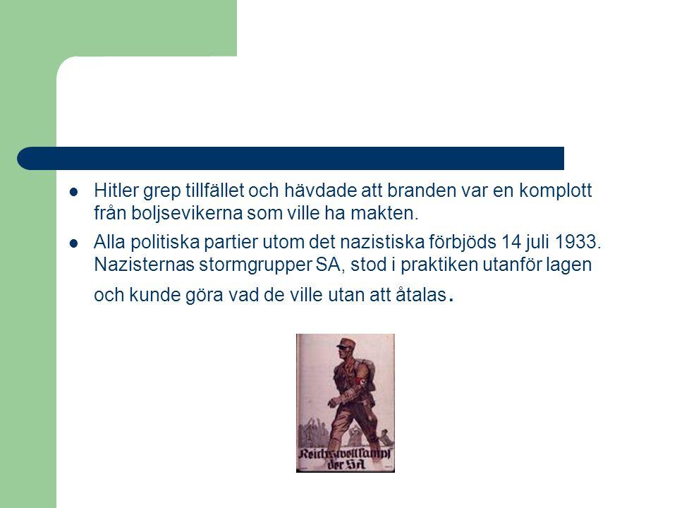 Hitler grep tillfället och hävdade att branden var en komplott från boljsevikerna som ville ha makten.